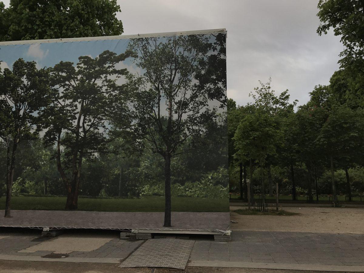 Untitled Sjoerd Martens