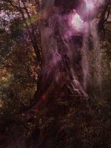 Sjoerd Martens, Japan, Exhibition, Artist, Collage